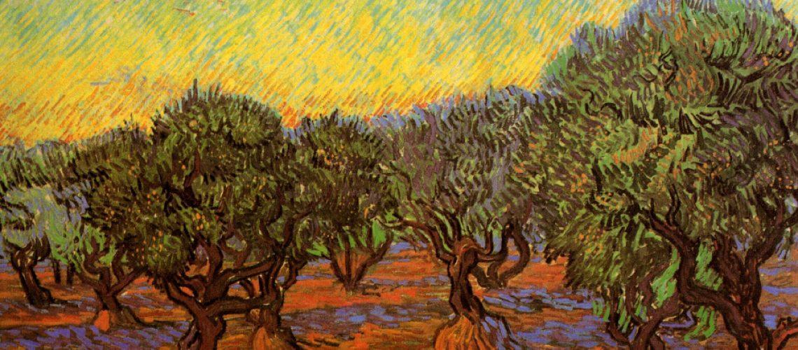Оливковая роща Ван Гог
